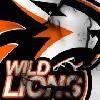 WILD LIONS vs. Power Gaming