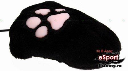 Лапа кошки или мышка?