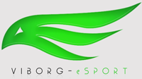 CSS состав у Viborg eSports